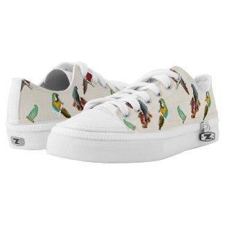 Parrots Printed Shoes
