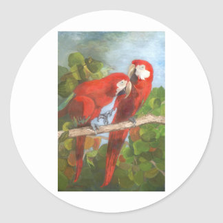 Parrots Sharing Secrets Classic Round Sticker