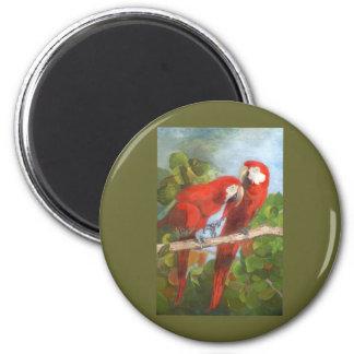 Parrots Sharing Secrets Magnet