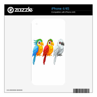 Parrots Skin For iPhone 4