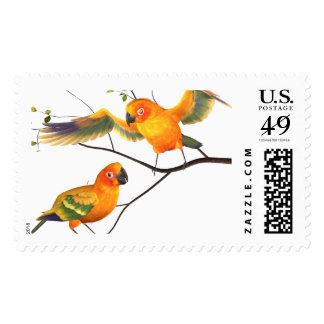 Parrots Sun Conures Postage