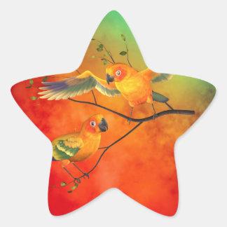 Parrots Sun Conures Star Sticker