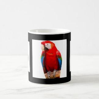 parrots taza de café