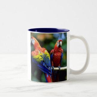 Parrots Two-Tone Coffee Mug