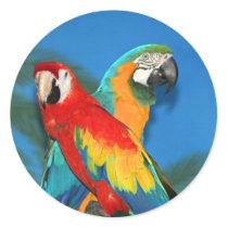 Parrots X Classic Round Sticker