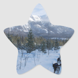 ParrotSleds - Landscape Star Sticker