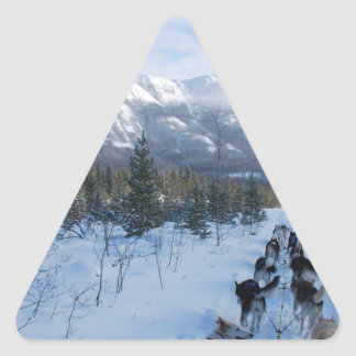 ParrotSleds - Landscape Triangle Sticker