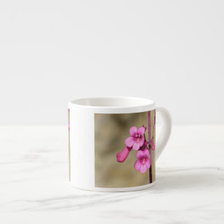 Parry's Penstemon Espresso Cup