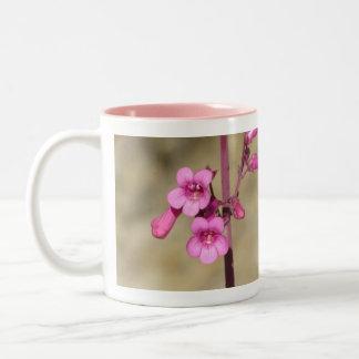 Parry's Penstemon Two-Tone Coffee Mug