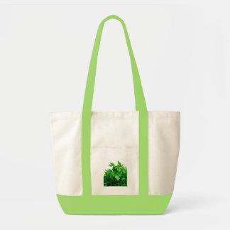 Parsley Bag