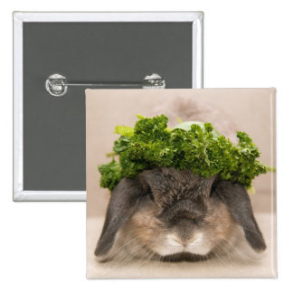 Parsley bunny (button)