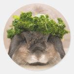 Parsley bunny (sticker)