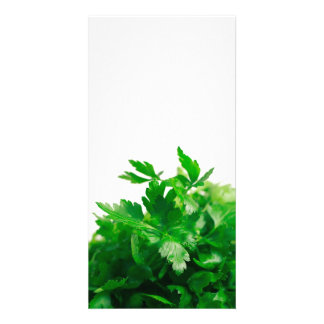 Parsley Card
