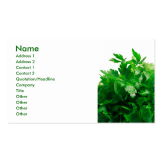 Parsley Double-Sided Standard Business Cards (Pack Of 100)