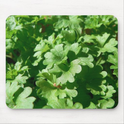 Parsley Green Mouse Pad