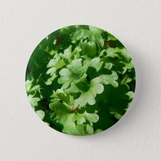 Parsley Green Pinback Button