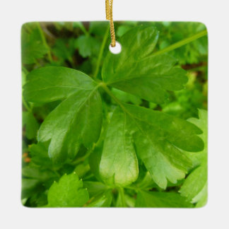 Parsley Leafy Green Herb Photography Ceramic Ornament