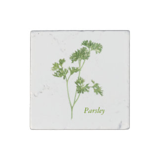 Parsley - Marble Stone Magnet