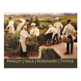 Parsley, Sage, Rosemary, and Thyme Postcard