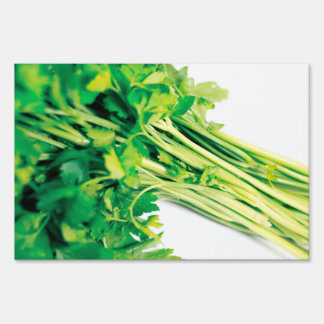 Parsley Sign