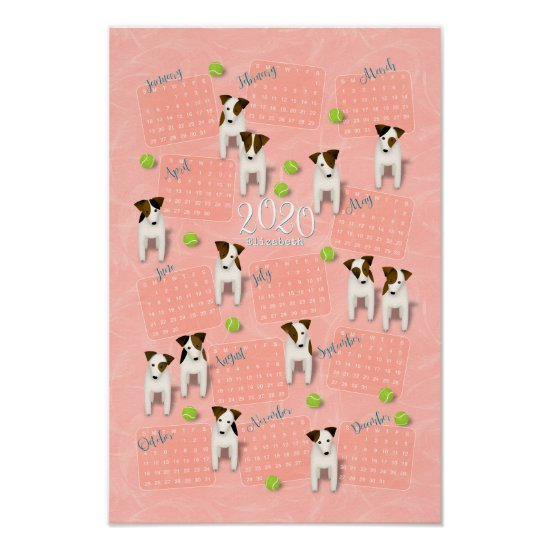 Parson Jack Russell Terriers peach 2020 calendar Poster