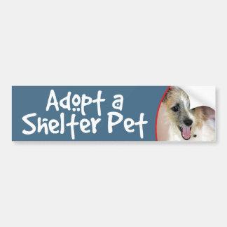 Parson Russell Terrier/Yorkie Bumper Sticker