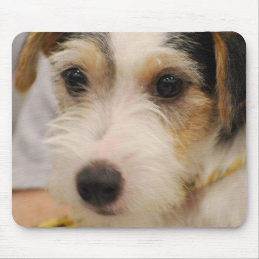 Parsons Terrier Mouse Pad