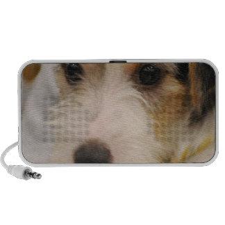 Parsons Terrier Speakers