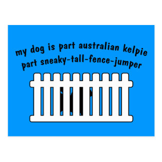 Part Australian Kelpie Part Fence-Jumper Postcard