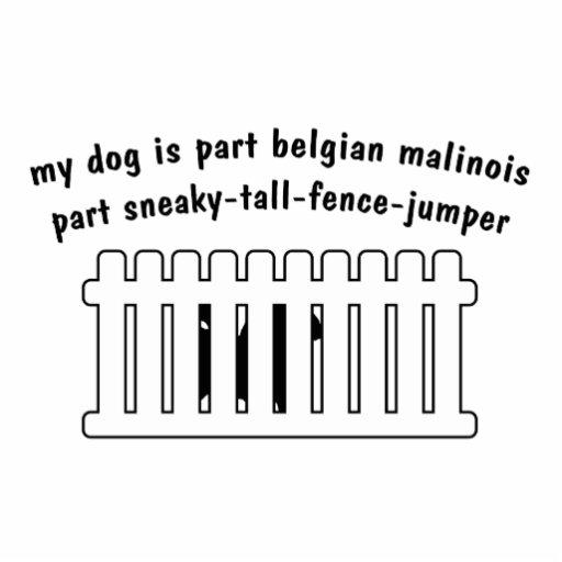 Part Belgian Malinois Part Fence-Jumper Cut Out