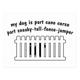 Part Cane Corso Part Fence-Jumper Postcard