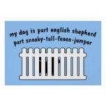 Part English Shepherd Part Fence-Jumper Poster