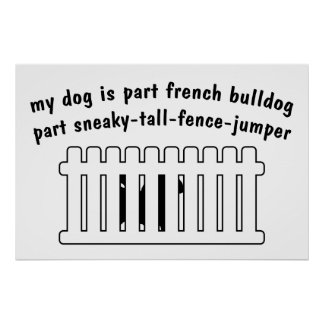 Part French Bulldog Part Fence-Jumper Posters