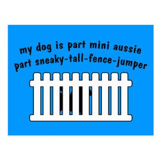 Part Mini Aussie Part Fence-Jumper Postcard
