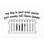 Part Mini Aussie Part Fence-Jumper Postcards