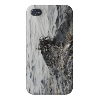Part of an oil slick in the Gulf of Mexico iPhone 4 Case