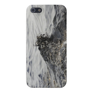 Part of an oil slick in the Gulf of Mexico iPhone 5 Cover