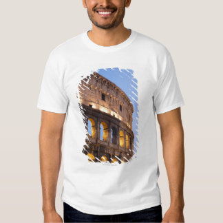 Part of Colosseum at dusk Tee Shirt
