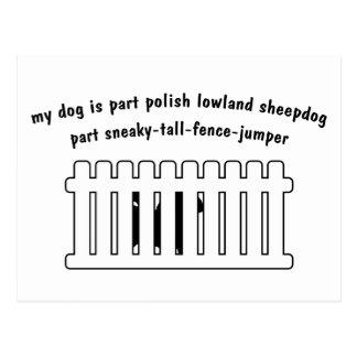 Part Polish Lowland Sheepdog Part Fence-Jumper Postcard