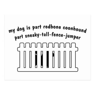 Part Redbone Coonhound Part Fence-Jumper Postcard