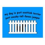 Part Scottish Terrier Part Fence-Jumper Post Card