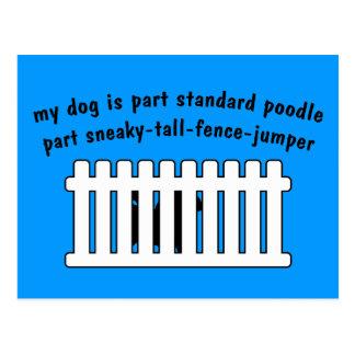 Part Standard Poodle Part Fence-Jumper Postcard