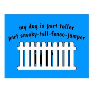 Part Toller Part Fence-Jumper Postcard