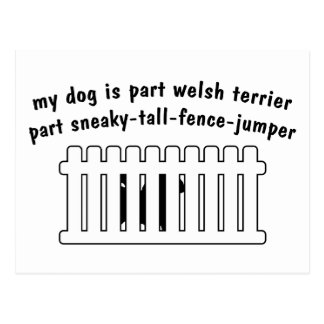 Part Welsh Terrier Part Fence-Jumper Postcard