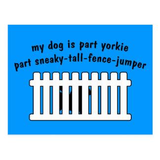 Part Yorkie Part Fence-Jumper Postcard