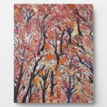 Parte 1 de FallFoliage Placas Con Foto