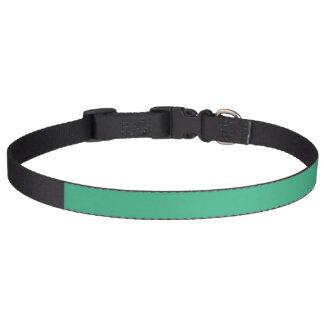 Parte alta de la verde menta coloreada collar de perro