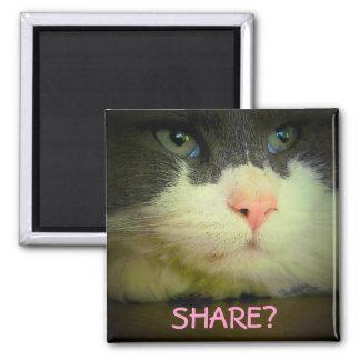 ¿Parte con el gatito? Imán Cuadrado