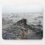 Parte de un pulido de aceite en el Golfo de México Alfombrilla De Raton