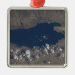 Parte del mar muerto adorno navideño cuadrado de metal